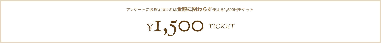1500 TICKET