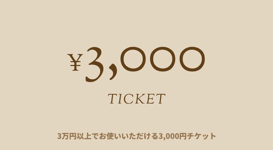 3000 TICKET