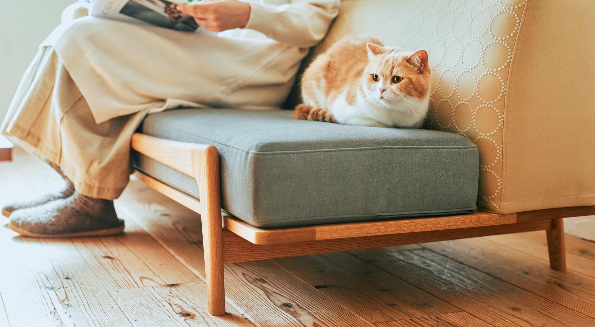 luu sofa